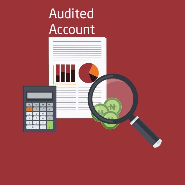 audited-accounts